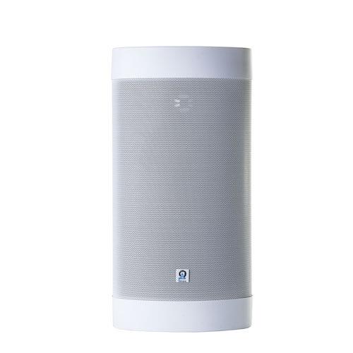 Origin Acoustic Outdoor Speaker